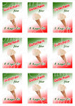 Print file 9 vouchers for Ice cream, Text in German